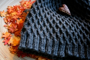 Fall Knitting Beanie