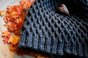 Fall Knitting Beanie